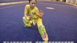 wushu picture2