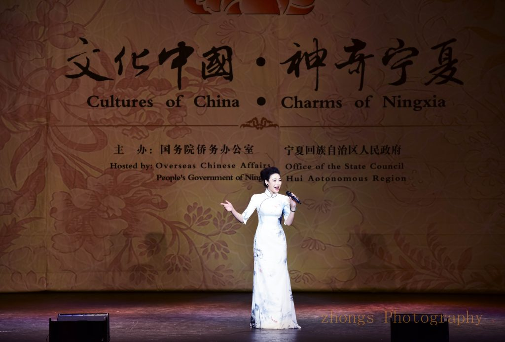 04文化中国神奇宁夏